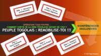 CONFÉRENCE INCLUSIVE DU PEUPLE TOGOLAIS : Remobilisation pour les réformes constitutionnelles, institutionnelles et électorales